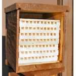 Mason Bee Homes: Farmer's Villa